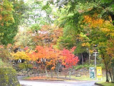 10-24 oukoku no kouyou.jpg