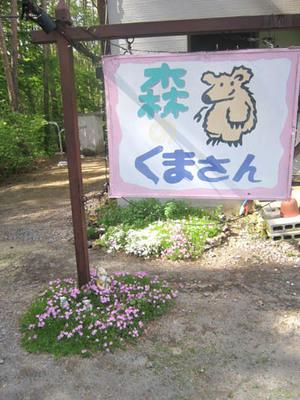 5-23 5557 sibasakura to kanban.jpg
