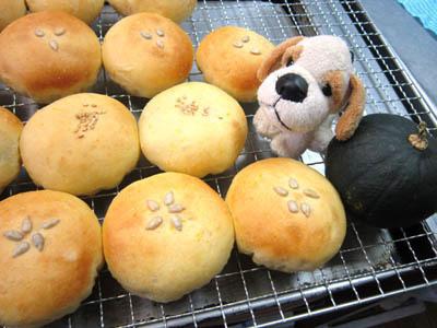butternuts pan.jpg